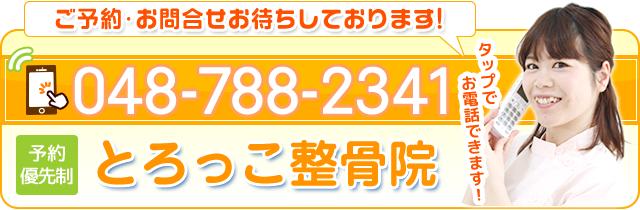 電話番号 0487882341